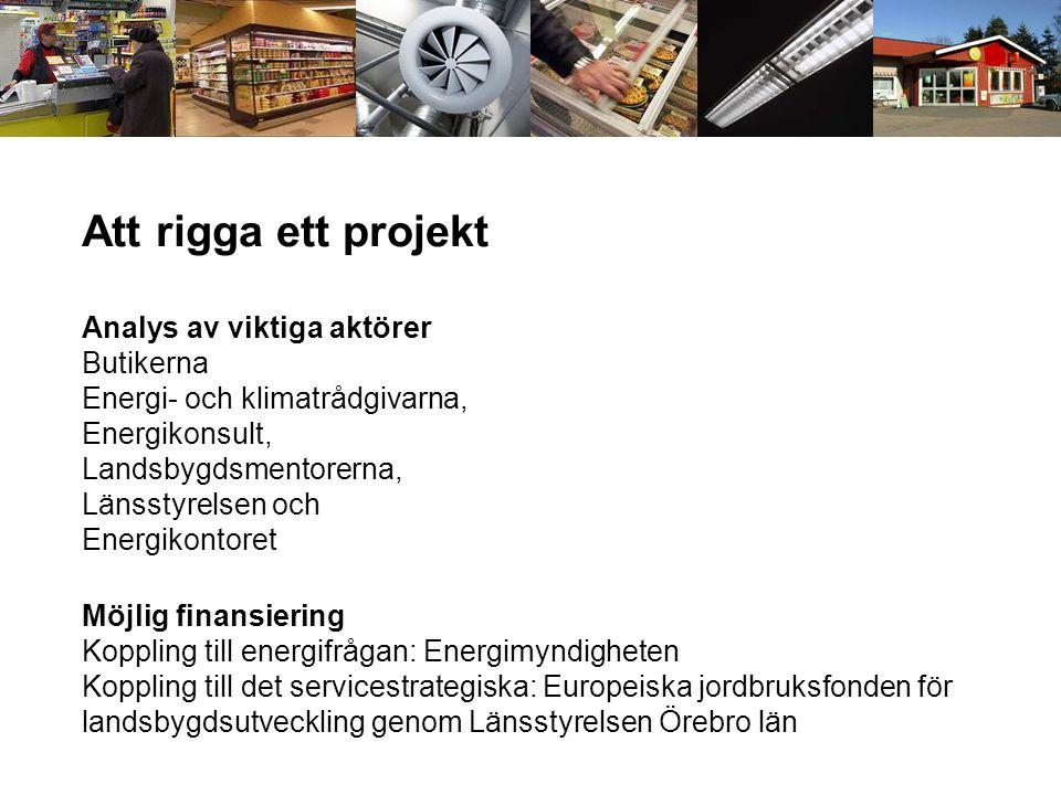 Att rigga ett projekt Analys av viktiga aktörer Butikerna Energi- och klimatrådgivarna, Energikonsult, Landsbygdsmentorerna, Länsstyrelsen och Energik
