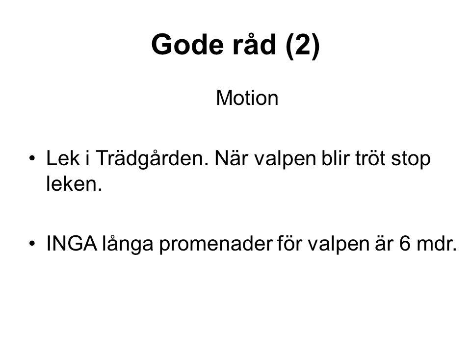 Gode råd (2) Motion •Lek i Trädgården.När valpen blir tröt stop leken.