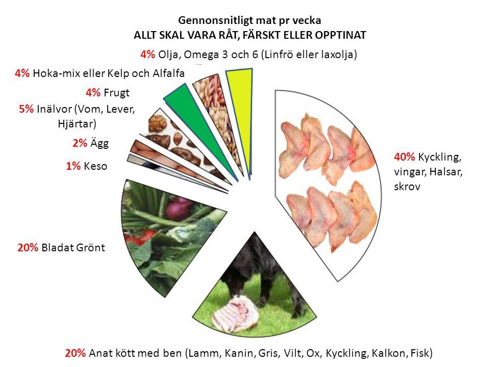40% Kyckling, vingar, Halsar, skrov Gennonsnitligt mat pr vecka ALLT SKAL VARA RÅT, FÄRSKT ELLER OPPTINAT 20% Anat kött med ben (Lamm, Kanin, Gris, Vilt, Ox, Kyckling, Kalkon, Fisk) 20% Bladat Grönt 1% Keso 2% Ägg 5% Inälvor (Vom, Lever, Hjärtar) 4% Frugt 4% Hoka-mix eller Kelp och Alfalfa 4% Olja, Omega 3 och 6 (Linfrö eller laxolja)