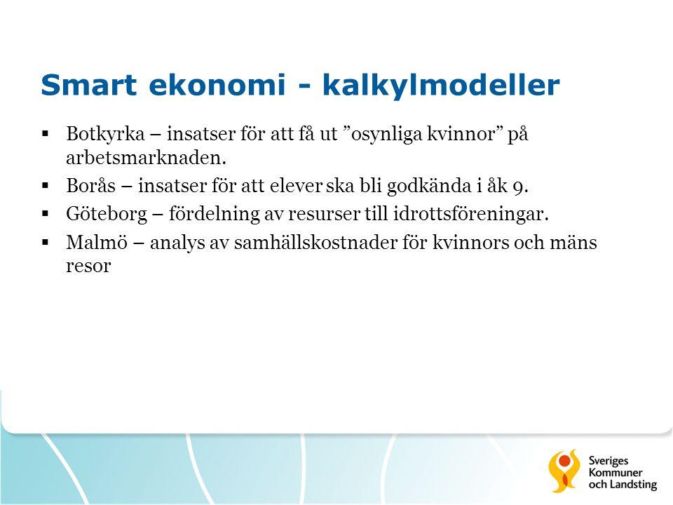 Smart ekonomi - kalkylmodeller  Botkyrka – insatser för att få ut osynliga kvinnor på arbetsmarknaden.