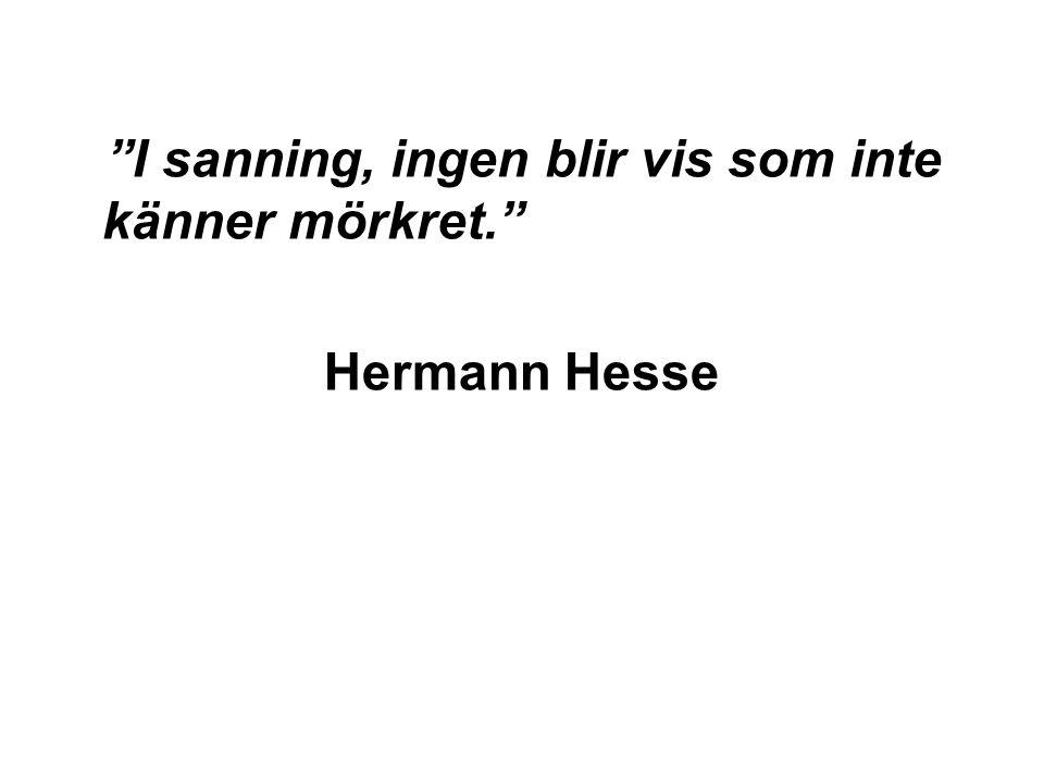 I sanning, ingen blir vis som inte känner mörkret. Hermann Hesse