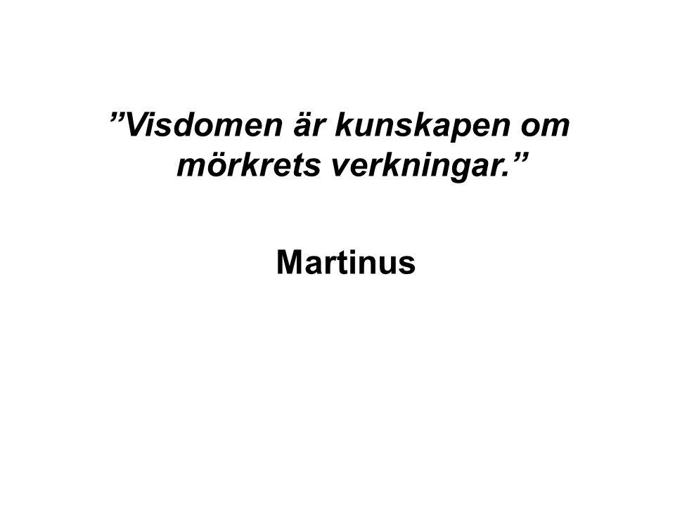 Visdomen är kunskapen om mörkrets verkningar. Martinus