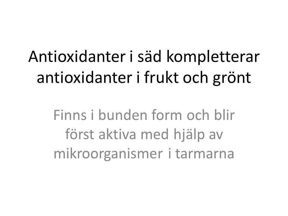 Antioxidanter i säd kompletterar antioxidanter i frukt och grönt Finns i bunden form och blir först aktiva med hjälp av mikroorganismer i tarmarna