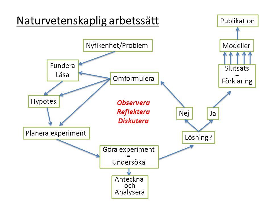 Naturvetenskaplig arbetssätt Hypotes Göra experiment = Undersöka Fundera Läsa Planera experiment Nyfikenhet/Problem Slutsats = Förklaring Lösning.