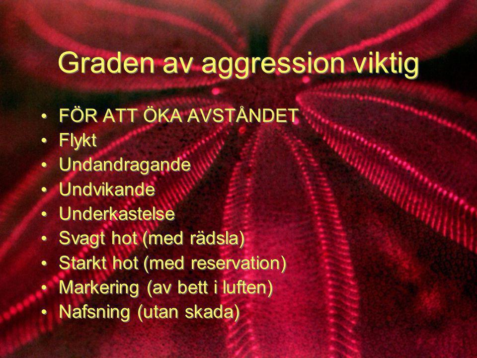 Graden av aggression viktig • FÖR ATT ÖKA AVSTÅNDET • Flykt • Undandragande • Undvikande • Underkastelse • Svagt hot (med rädsla) • Starkt hot (med re