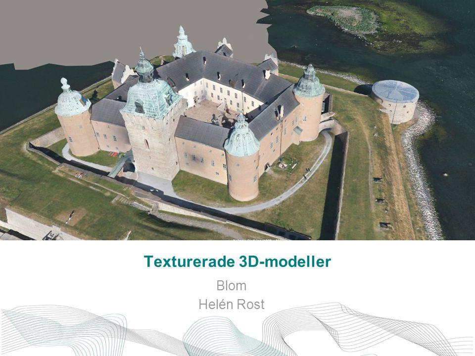 Texturerade 3D-modeller Blom Helén Rost