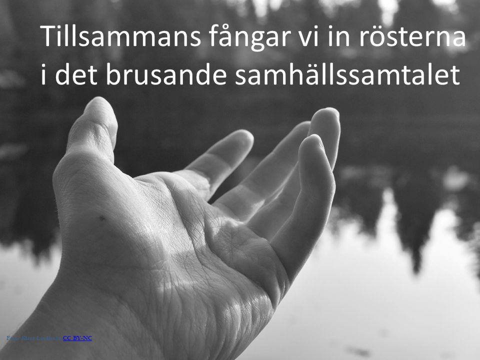 Tillsammans fångar vi in rösterna i det brusande samhällssamtalet Foto: Klara Lindholm CC BY-NCCC BY-NC