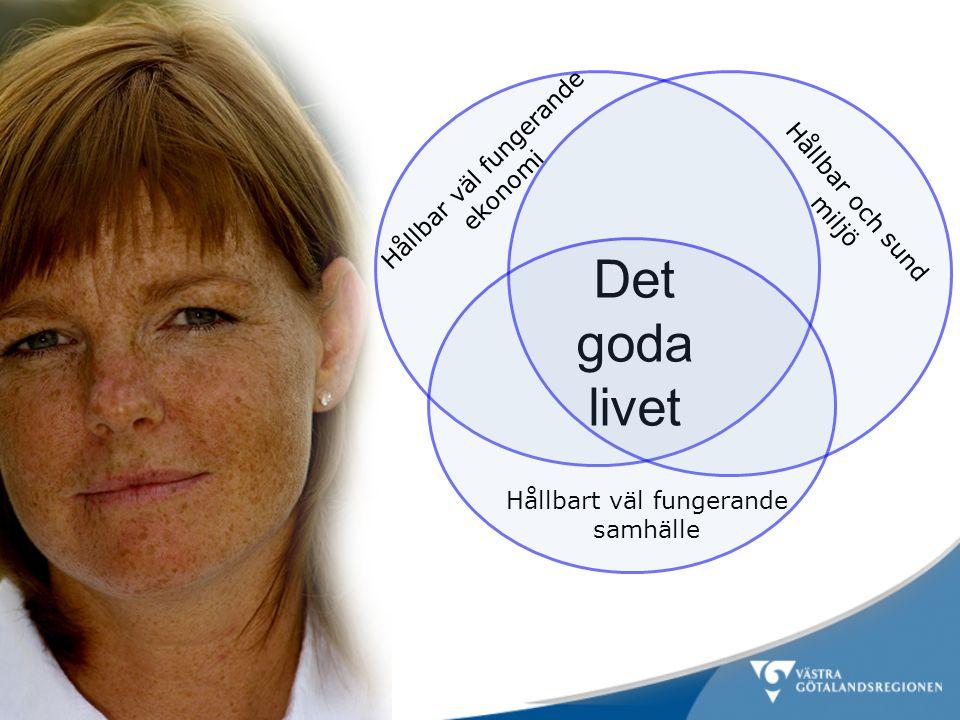 Det goda livet Hållbart väl fungerande samhälle Hållbar och sund miljö Hållbar väl fungerande ekonomi