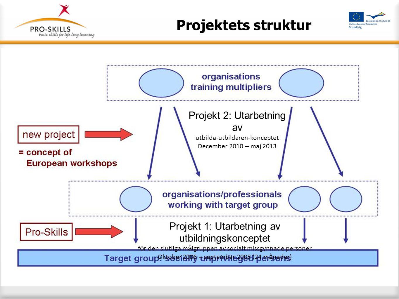 Projektets struktur Projekt 1: Utarbetning av utbildningskonceptet f ö r den slutliga m å lgruppen av socialt missgynnade personer Oktober 2006 – sept