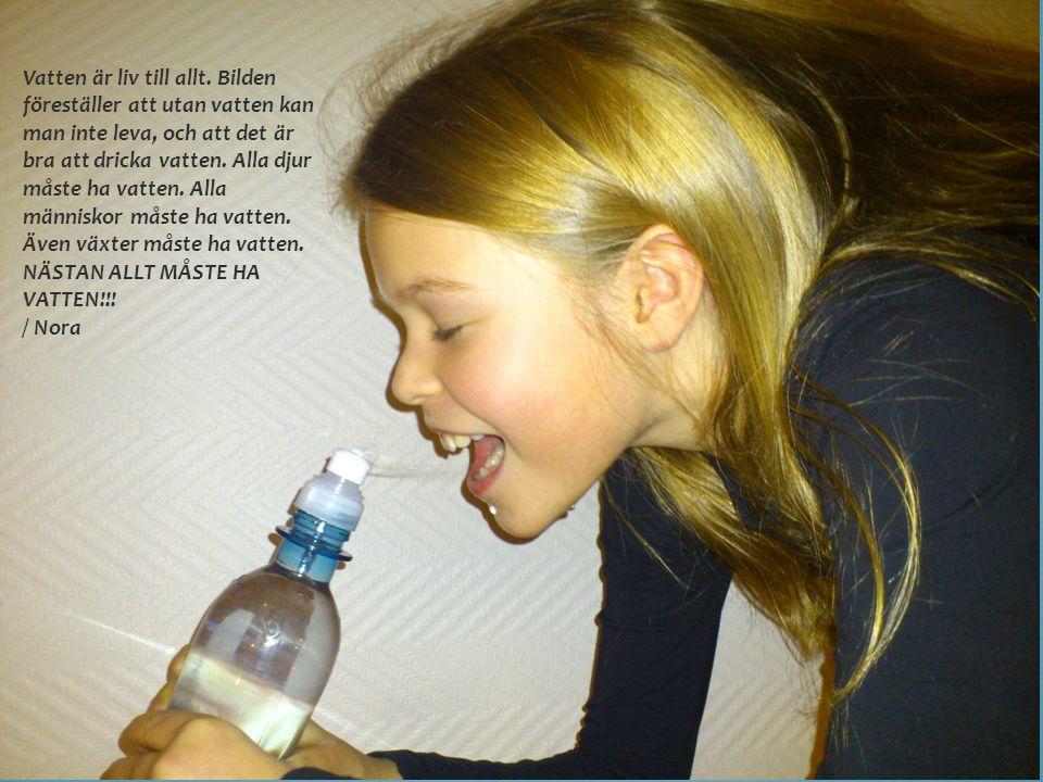 Vatten är liv till allt. Bilden föreställer att utan vatten kan man inte leva, och att det är bra att dricka vatten. Alla djur måste ha vatten. Alla m