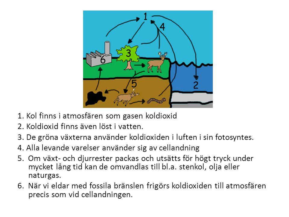 1. Kol finns i atmosfären som gasen koldioxid 2. Koldioxid finns även löst i vatten. 3. De gröna växterna använder koldioxiden i luften i sin fotosynt