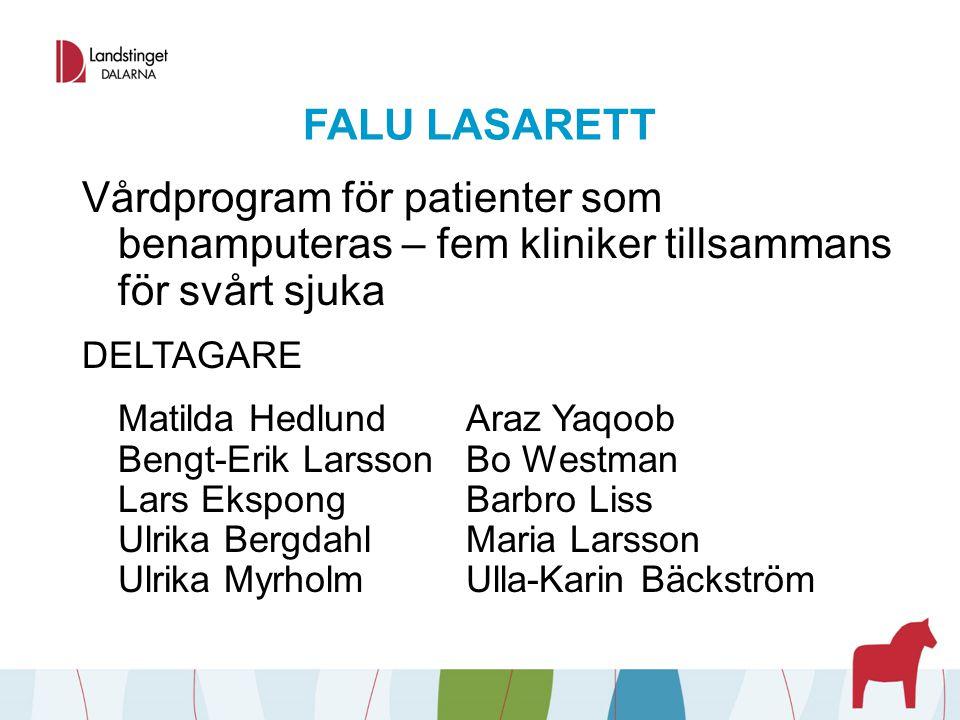 FALU LASARETT Vårdprogram för patienter som benamputeras – fem kliniker tillsammans för svårt sjuka DELTAGARE Matilda HedlundAraz Yaqoob Bengt-Erik La