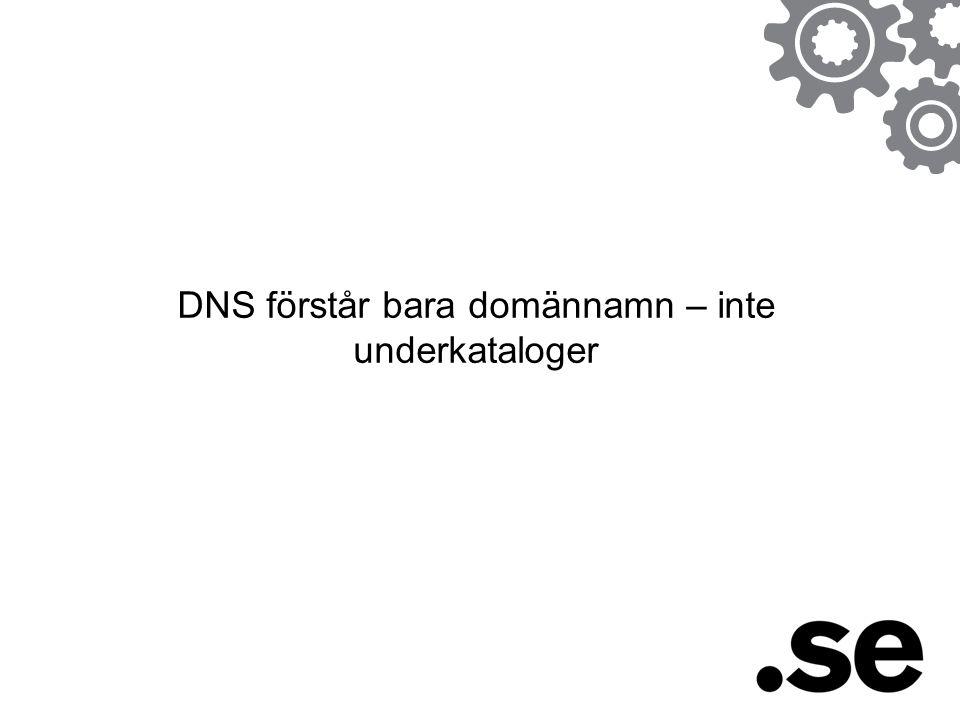 DNS förstår bara domännamn – inte underkataloger