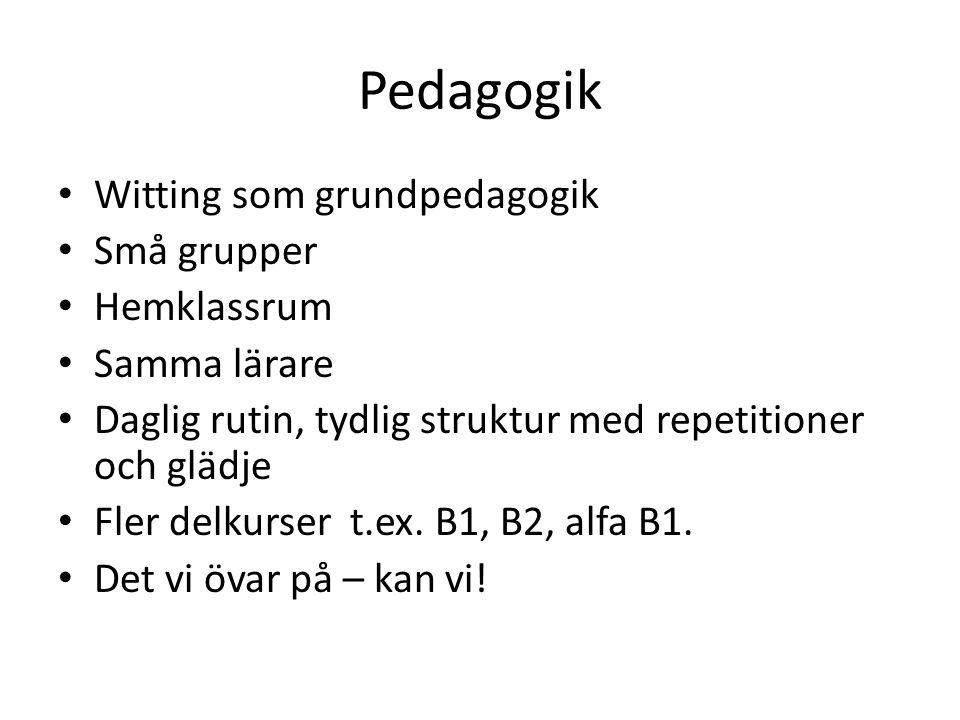 Pedagogik • Witting som grundpedagogik • Små grupper • Hemklassrum • Samma lärare • Daglig rutin, tydlig struktur med repetitioner och glädje • Fler d