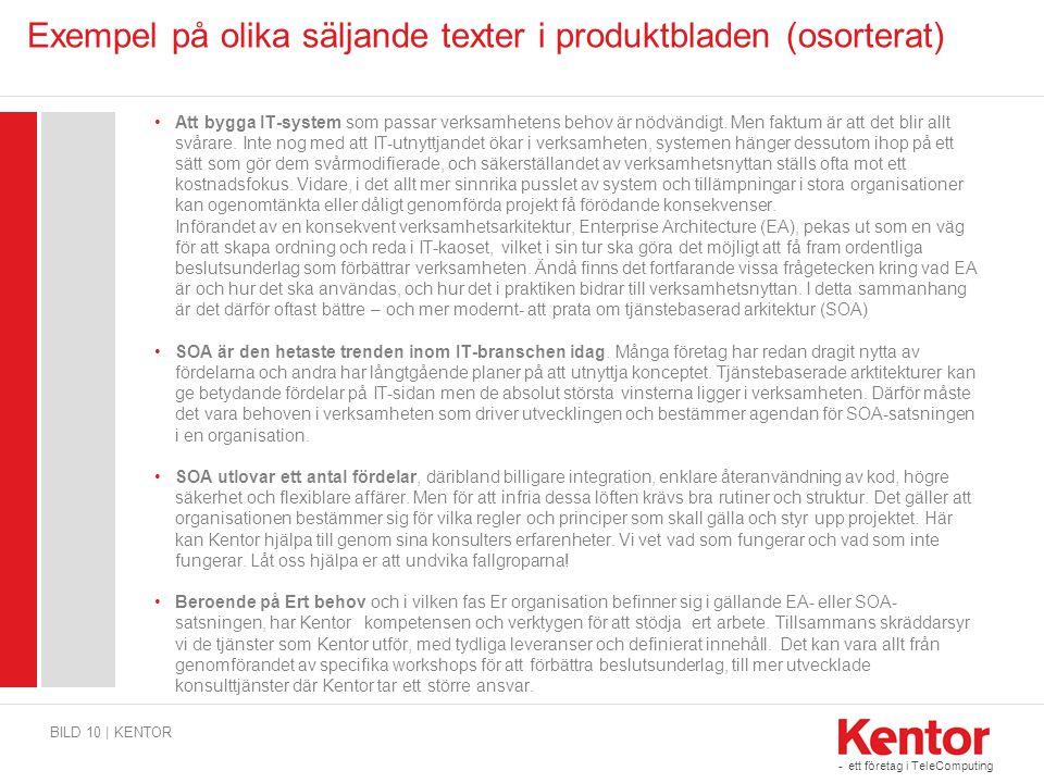 - ett företag i TeleComputing Exempel på olika säljande texter i produktbladen (osorterat) •Att bygga IT-system som passar verksamhetens behov är nödv