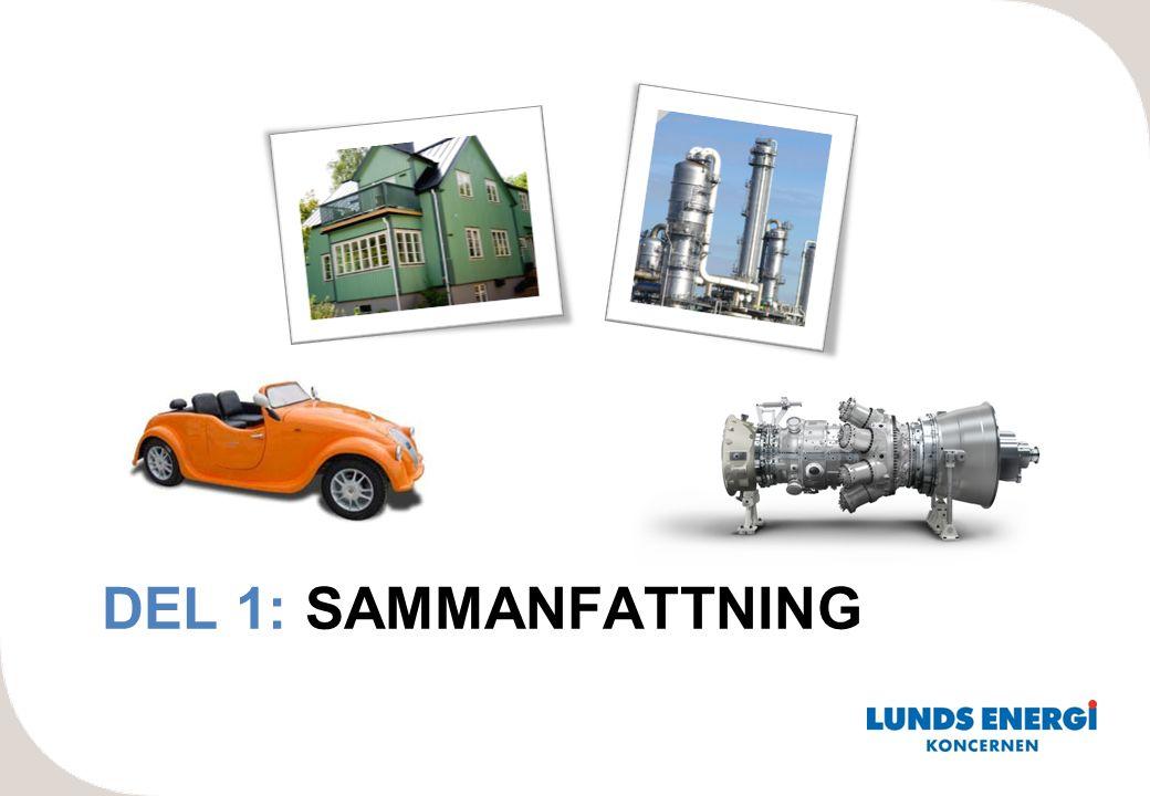 DEL 1: SAMMANFATTNING