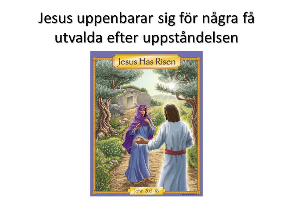 Jesus uppenbarar sig för några få utvalda efter uppståndelsen