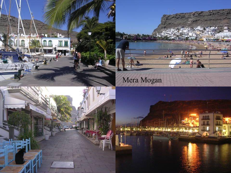 Mera Mogan