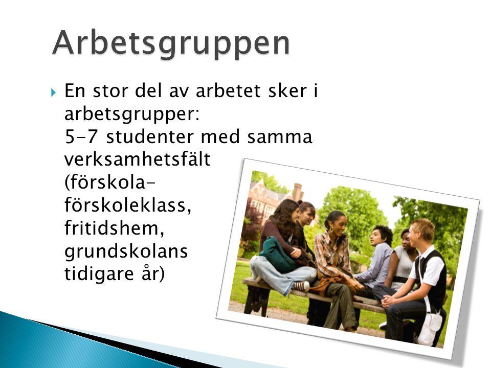  En stor del av arbetet sker i arbetsgrupper: 5-7 studenter med samma verksamhetsfält (förskola- förskoleklass, fritidshem, grundskolans tidigare år)