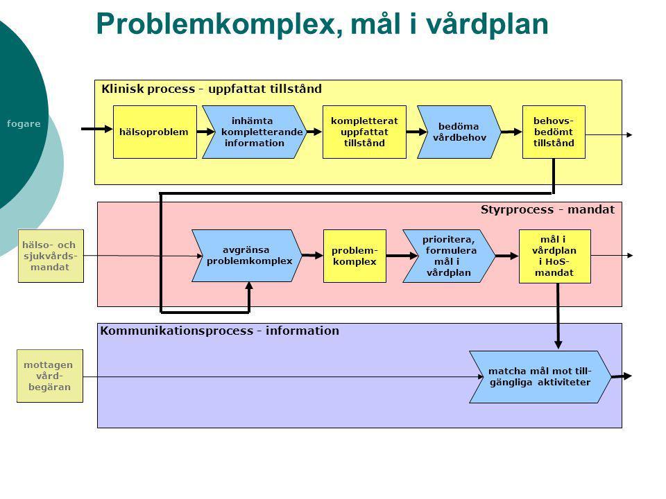 fogare Problemkomplex, mål i vårdplan inhämta kompletterande information kompletterat uppfattat tillstånd avgränsa problemkomplex mål i vårdplan i HoS