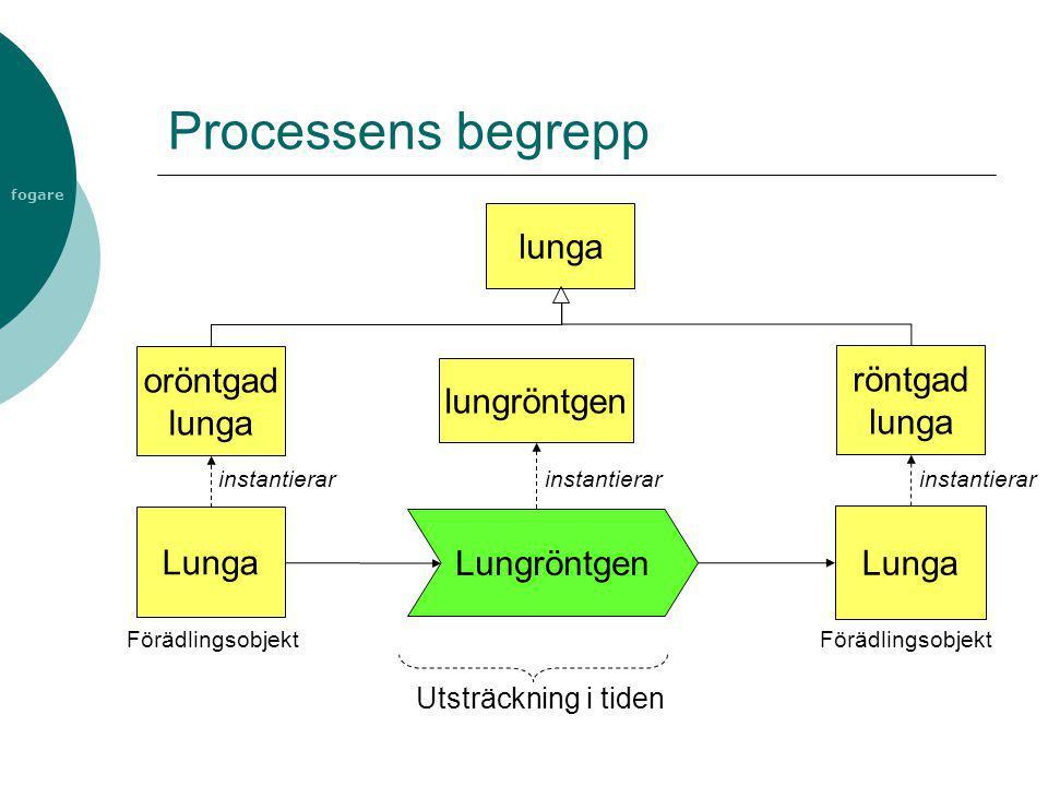 fogare Processens begrepp Lungröntgen Lunga Utsträckning i tiden Förädlingsobjekt oröntgad lunga röntgad lunga instantierar lunga lungröntgen instanti