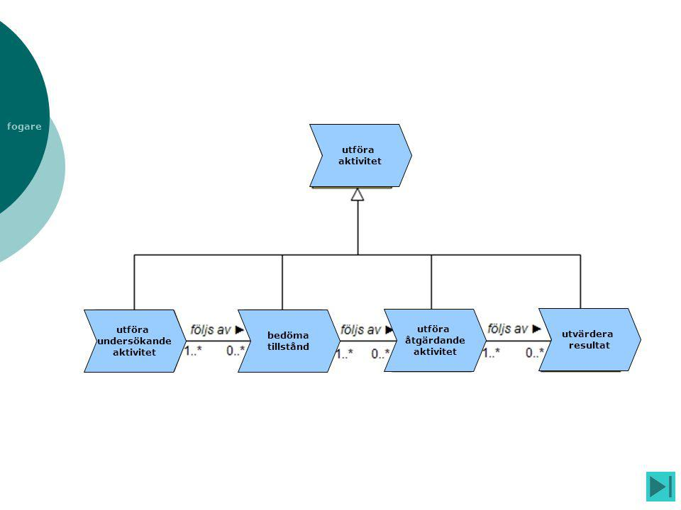 utföra aktivitet utföra undersökande aktivitet bedöma tillstånd utföra åtgärdande aktivitet utvärdera resultat