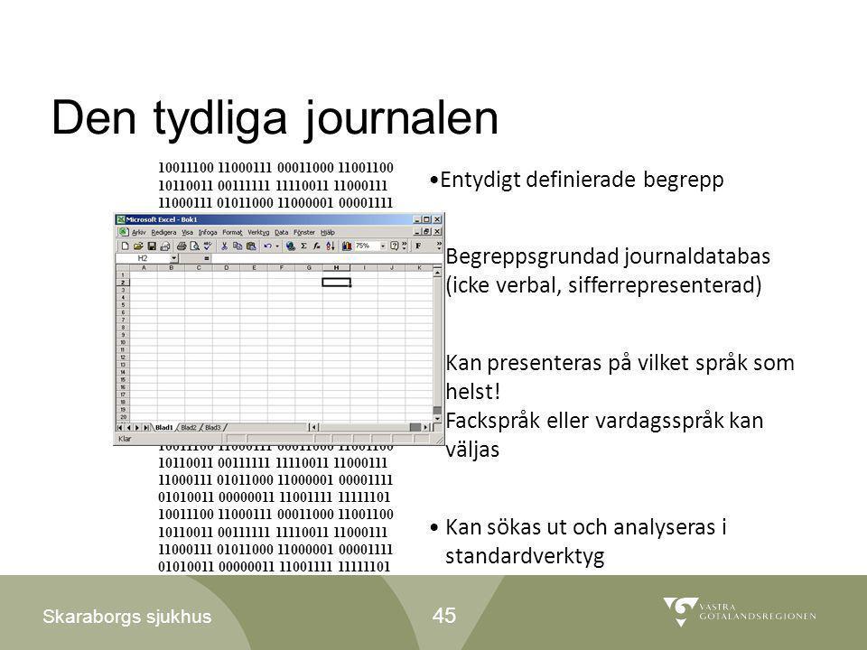Skaraborgs sjukhus Den tydliga journalen •Begreppsgrundad journaldatabas (icke verbal, sifferrepresenterad) •Kan presenteras på vilket språk som helst