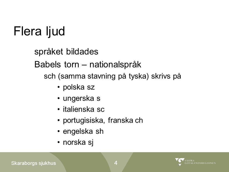 Skaraborgs sjukhus Flera ljud språket bildades Babels torn – nationalspråk sch (samma stavning på tyska) skrivs på •polska sz •ungerska s •italienska
