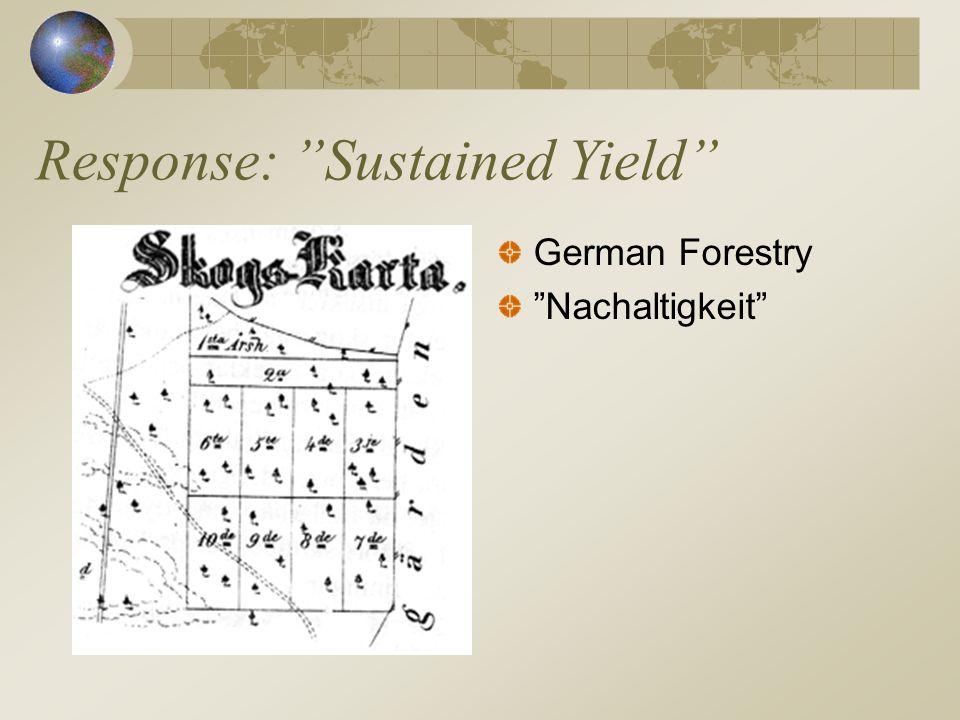 Response: Sustained Yield German Forestry Nachaltigkeit