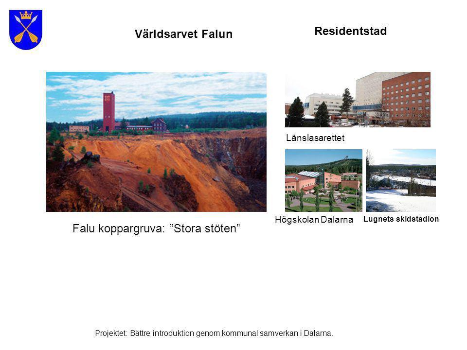 Vinterturism Projektet: Bättre introduktion genom kommunal samverkan i Dalarna.