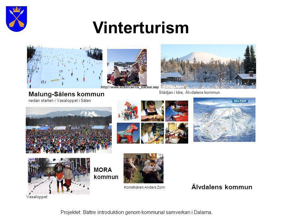 Sommarturism Projektet: Bättre introduktion genom kommunal samverkan i Dalarna.