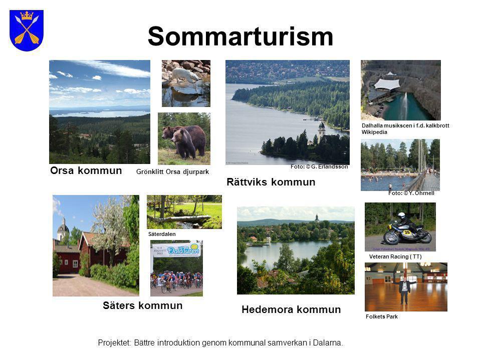 Småindustri Projektet: Bättre introduktion genom kommunal samverkan i Dalarna.