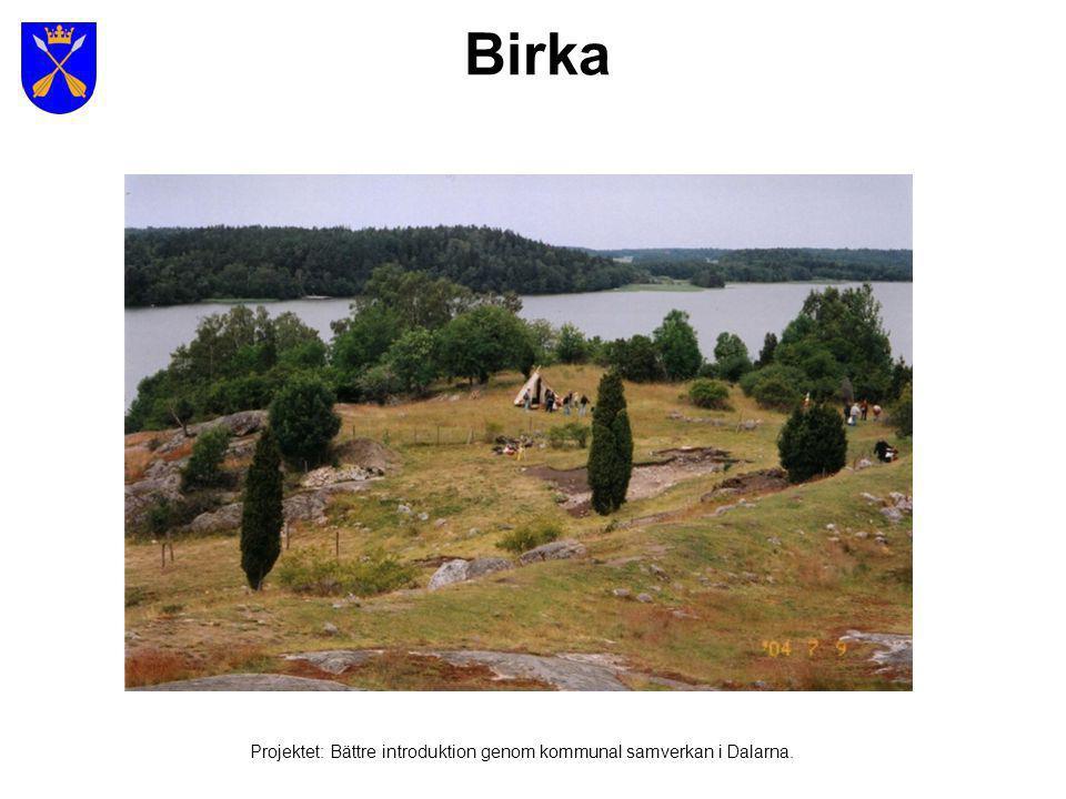 Religion under och efter vikingatiden Projektet: Bättre introduktion genom kommunal samverkan i Dalarna.