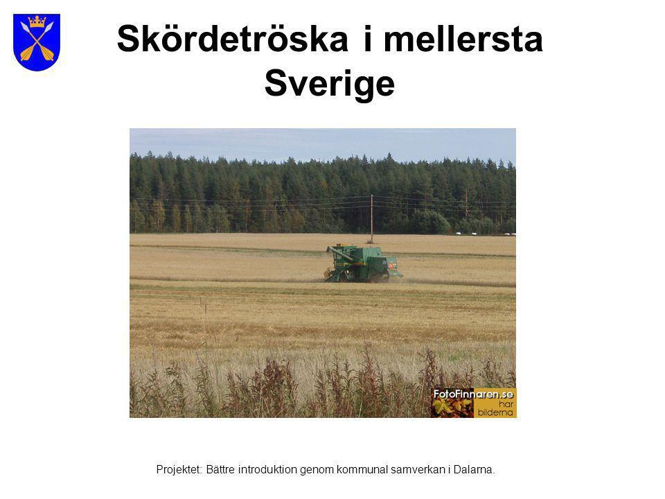 Norra Sverige - Norrland Projektet: Bättre introduktion genom kommunal samverkan i Dalarna.