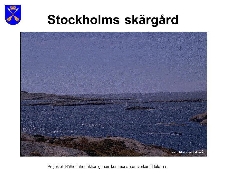 Bild: Multimediabyrån Stockholms skärgård Projektet: Bättre introduktion genom kommunal samverkan i Dalarna.