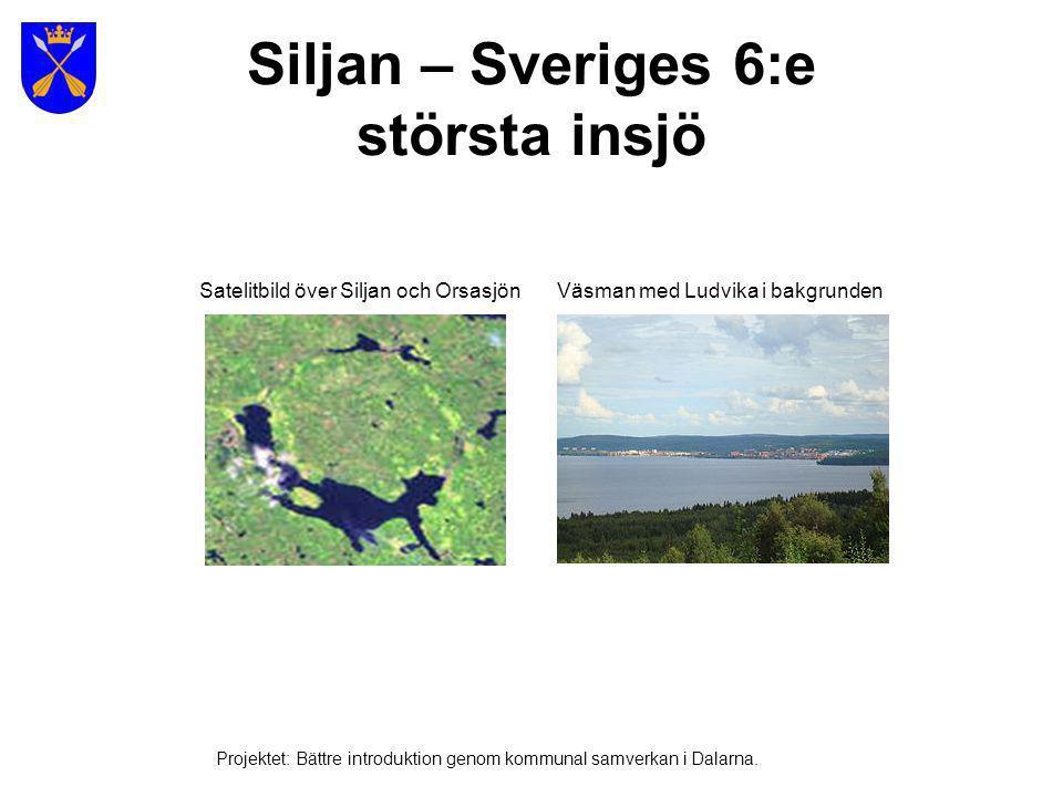 Vilda djur i de svenska skogarna Projektet: Bättre introduktion genom kommunal samverkan i Dalarna.