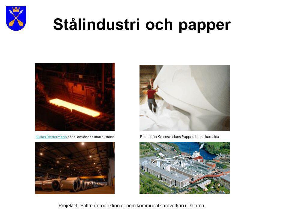 Bild: Multimediab yrån Projektet: Bättre introduktion genom kommunal samverkan i Dalarna.