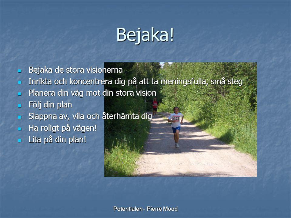 Potentialen - Pierre Mood Bejaka!  Bejaka de stora visionerna  Inrikta och koncentrera dig på att ta meningsfulla, små steg  Planera din väg mot di