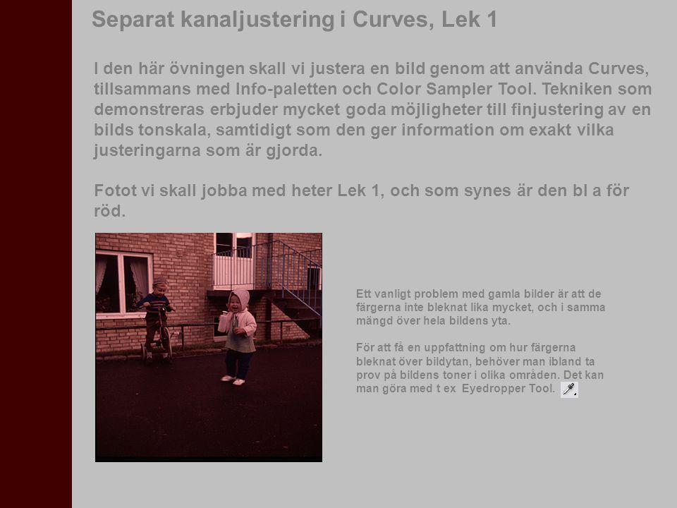 I den här övningen skall vi justera en bild genom att använda Curves, tillsammans med Info-paletten och Color Sampler Tool. Tekniken som demonstreras