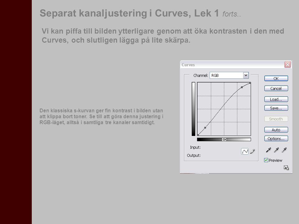 Separat kanaljustering i Curves, Lek 1 forts.. Vi kan piffa till bilden ytterligare genom att öka kontrasten i den med Curves, och slutligen lägga på