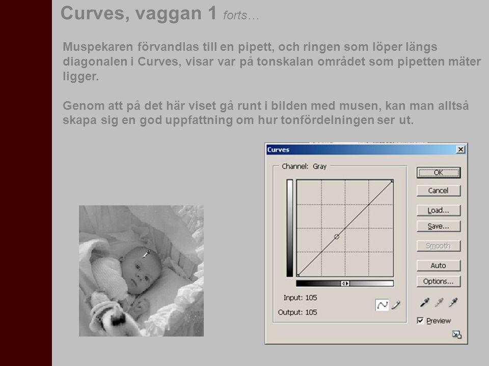Om vi nu vill höja kontrasten i bilden, kan vi göra det genom att sätta ut justeringspunker längs med Curves-diagonalen.