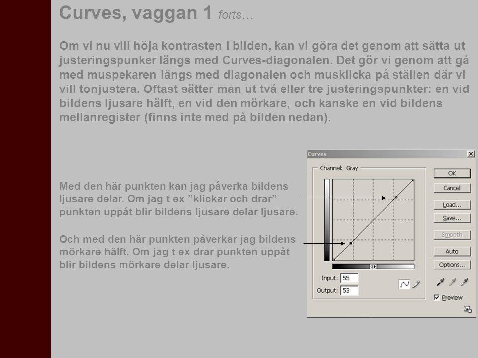 Om vi nu vill höja kontrasten i bilden, kan vi göra det genom att sätta ut justeringspunker längs med Curves-diagonalen. Det gör vi genom att gå med m