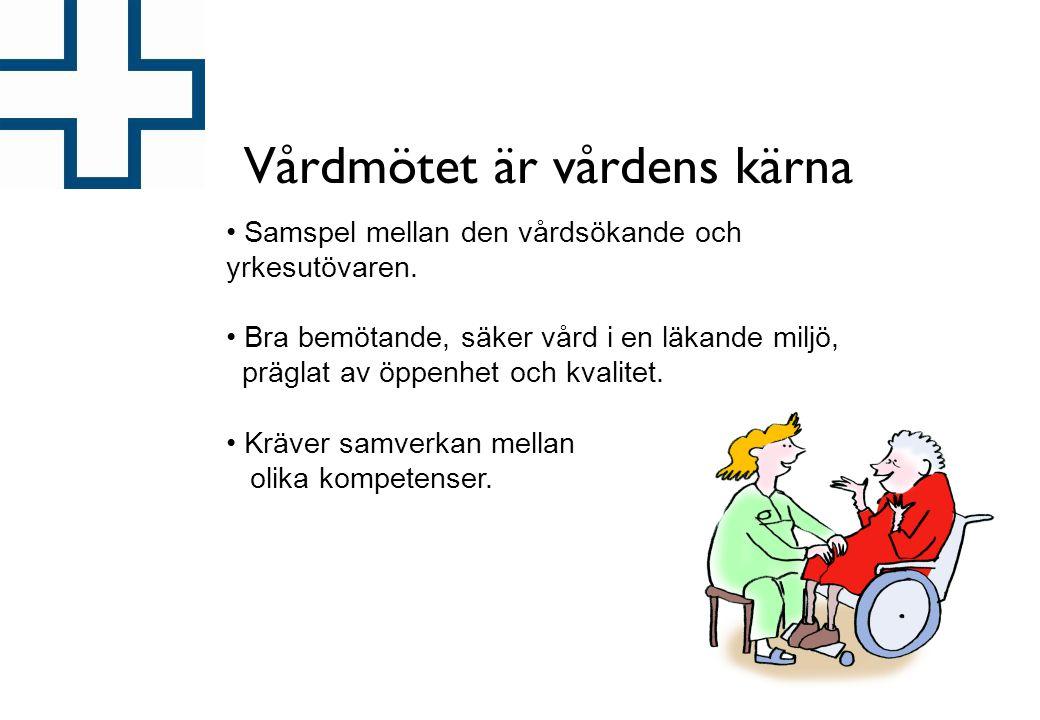 VÅRDFÖRBUNDET 2007 Vårdmötet är vårdens kärna • Samspel mellan den vårdsökande och yrkesutövaren. • Bra bemötande, säker vård i en läkande miljö, präg