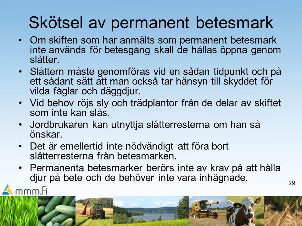 29 Skötsel av permanent betesmark •Om skiften som har anmälts som permanent betesmark inte används för betesgång skall de hållas öppna genom slåtter.