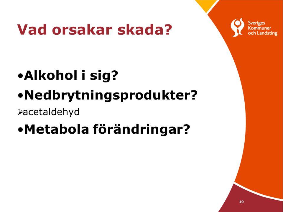 10 Vad orsakar skada? •Alkohol i sig? •Nedbrytningsprodukter?  acetaldehyd •Metabola förändringar?