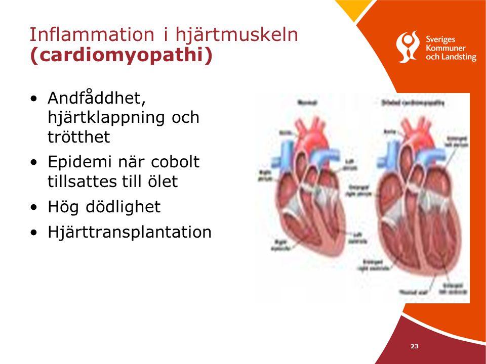 23 Inflammation i hjärtmuskeln (cardiomyopathi) •Andfåddhet, hjärtklappning och trötthet •Epidemi när cobolt tillsattes till ölet •Hög dödlighet •Hjär