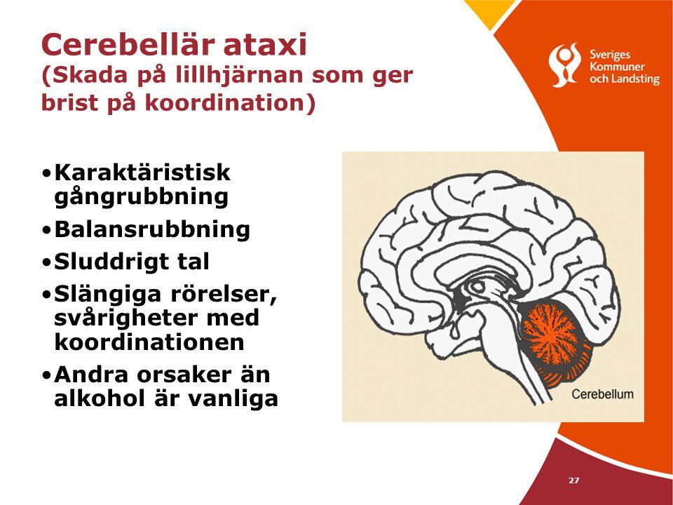 27 Cerebellär ataxi (Skada på lillhjärnan som ger brist på koordination) •Karaktäristisk gångrubbning •Balansrubbning •Sluddrigt tal •Slängiga rörelse