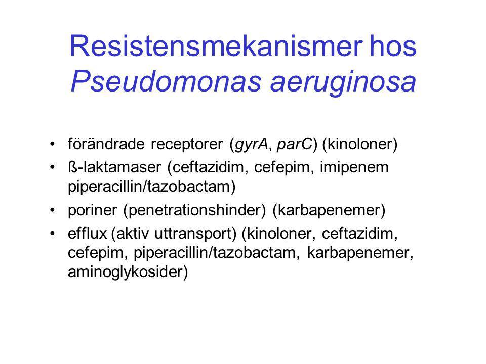 Resistensmekanismer hos Pseudomonas aeruginosa • förändrade receptorer (gyrA, parC) (kinoloner) • ß-laktamaser (ceftazidim, cefepim, imipenem piperacillin/tazobactam) • poriner (penetrationshinder) (karbapenemer) • efflux (aktiv uttransport) (kinoloner, ceftazidim, cefepim, piperacillin/tazobactam, karbapenemer, aminoglykosider)
