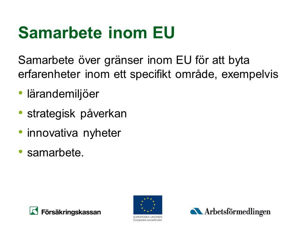 Samarbete inom EU Samarbete över gränser inom EU för att byta erfarenheter inom ett specifikt område, exempelvis • lärandemiljöer • strategisk påverka