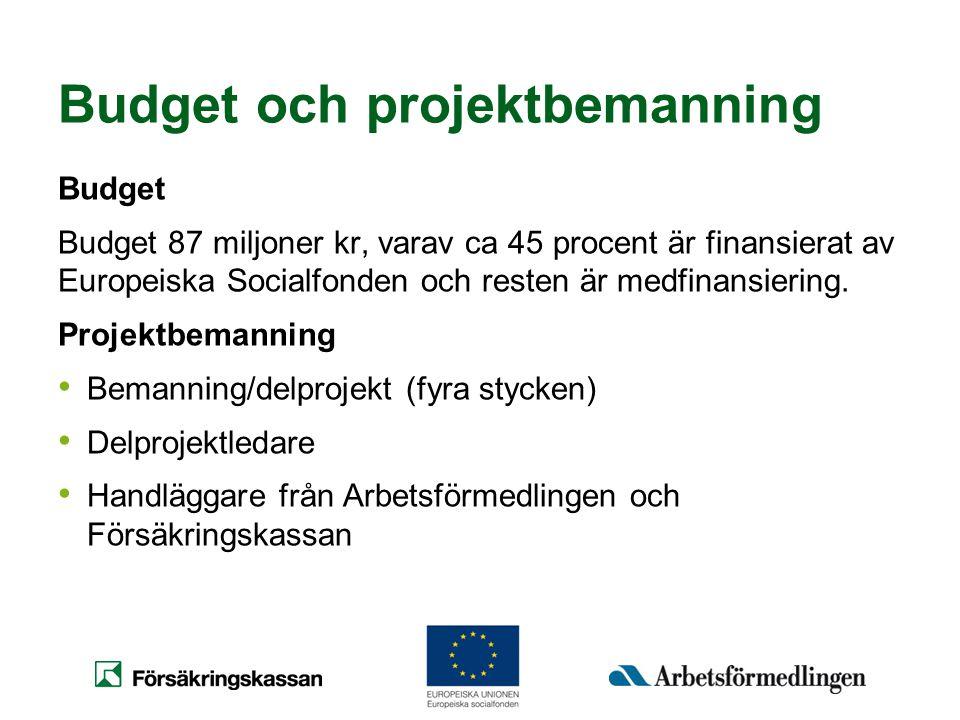 Budget och projektbemanning Budget Budget 87 miljoner kr, varav ca 45 procent är finansierat av Europeiska Socialfonden och resten är medfinansiering.